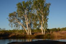 Edward River Campground