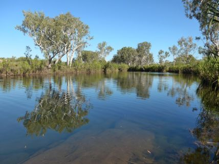 King Edward River Campground